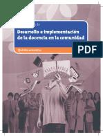 Desarrollo-Imp-Docencia-V-14 (1)
