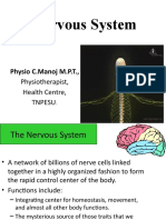 Nervous System physiology.pptx