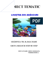 proiecttematiclinisteadinadancuri