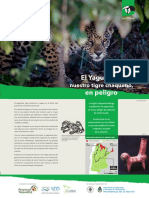 yaguarete_2017_DIGITAL_baja