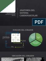 ANATOMIA CARDIACA 2019.pdf