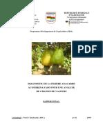 16.2 - Rapport Diagnostic Anacarde 2008