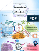 Sistema endocrino y nervioso mapa mental.
