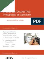 5. PRESUPUESTO MAESTRO.pptx