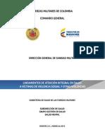 1879 - DGSM - MANUAL PROTOCOLO DE ATENCION INTEGRAL