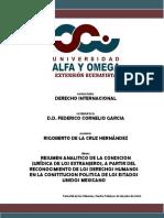RESUMEN CONDICION DE LOS EXTRANJEROS RIGO
