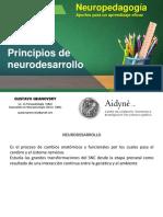 Principios de Neurodesarrollo-Presentacion