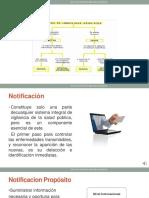 CLASE 12 USMP 2020 Imprimir.pdf