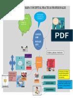 Mapa conceptual Practica profesional