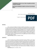 André Júnio e Paulo Viana — Análise da Estabilidade Externa de um Muro de Gabião