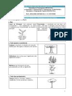 APOSTILA_PARA_USO_EM_AULAS_PRATICAS_ORGA.pdf