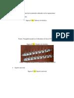 MATERIALES DE CONDUCCION ELECTRICA
