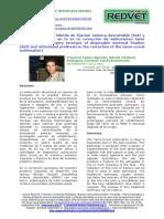 Ortopedia_protesis