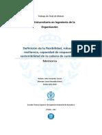 Definicion de la flexibilidad, robustez, resilencia, capacidad de respuesta y sostenibilidad de la cadena de suministro. trabajo master.pdf