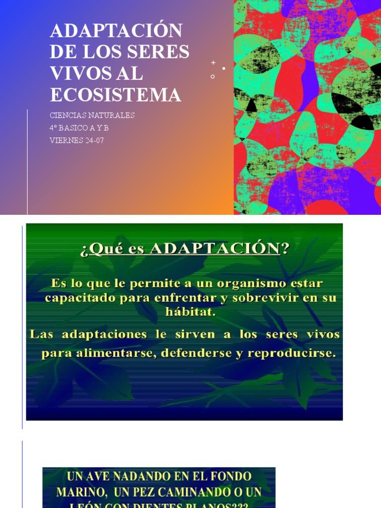 Ppt Ciencias Adaptaciones Seres Vivos Clase