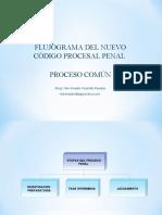 FLUJOGRAMAS NUEVO PROCESO PENAL