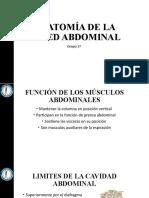 Anatomía de la pared abdominal.pptx