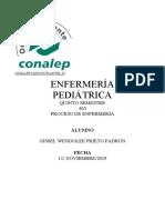PAE. SALMONELLA GISSEL WENDOLEE PRIETO PADRÓN. 503.docx