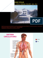 RESUMEN-CIRCULATORIO.ppsx