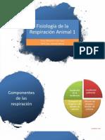 Fisiología de la Respiración Animal 1 (presentación).pdf