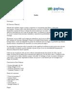 Megaton.pdf