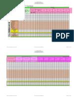 NUEVA PLANTILLA INFORME PAI 2019 EN BLANCO DIC.xlsx