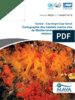 Cartographie des habitats marins clés de Méditerranée et initiation de réseaux de surveillance