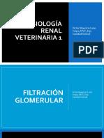 Fisiología Renal veterinaria 1.pdf