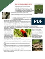 ESPACIOS DE PROTECCIÓN DE LOS ANIMALES Y PLANTAS.docx