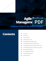 Agile-PM-101-Beginners-Guide-Non-Project-Managers-Updated.pdf
