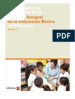 manual RIEB