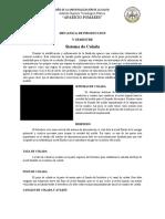 SISTEMA DE FUNDICION ( MAZARROTA ) 05.docx