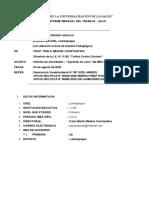3_ FORMATO 2 INFORME DIRECTOR O COORDINADOR A UGEL OFICIO 049 (1)
