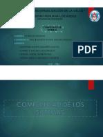 COMPLEJIDAD.pdf