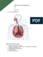 Vocalizes no treino funcional da voz.pdf