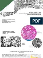 Morfologia urbana y analisis urbanistico del barrio de Villa Juana en RD