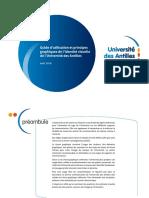 okuniversite_des_antilles_-_charte_graphique.pdf