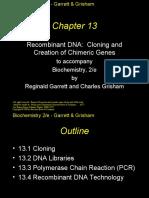 biochem13
