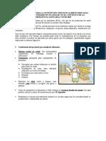 ORIENTACIONES PARA LA GESTIÓN DEL SERVICIO ALIMENTARIO QALI WARMA Y ACTIVIDADES EN EL HOGAR  EN EL CONTEXTO DE LA EMERGENCIA SANITARIA COVID 2019