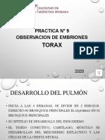 09. PRACTICA 9  EMBRION TORAX