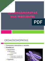 CROMOSOMOPATIAS MAS FRECUENTES