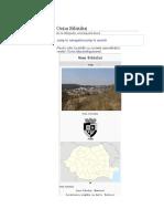 Ocna Sibiului.docx