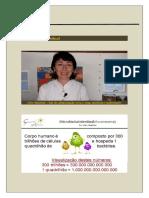 Microbiota - Cléo.docx