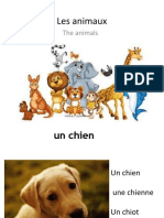 les differents animaux