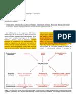 INFLAMACIÓN (1).pdf