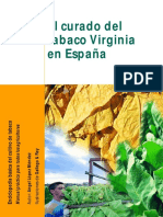 El Curado del Tabaco tipo Virginia 2000
