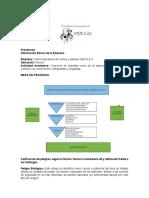 Información Básica de la Empresa FINAL