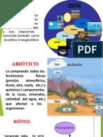 6. ECOLOGIA