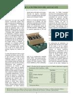 Manejo_de_la_nutricion_de_aguacate_3.pdf