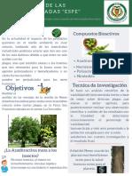Poster del Proyecto integrador.pdf